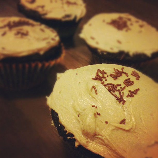 Deep Dark Mocha Cupcakes by freshfromthe.com