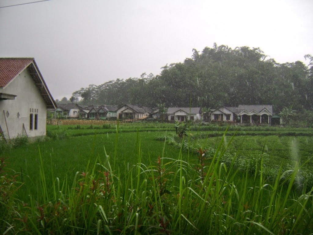 Jual Tanah Murah di Temanggung