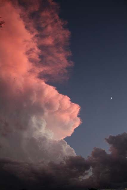 clouds, sky, photography, sarah myers, sunset, evening, desert, weather, majestic, twilight, digital, blue, orange, skies, photograph, beauty, large, vast, skyscape, landscape, cloudscape, vivid, autumn, fall, storm, thunder, cumulus, impressive, bright, night, Sonora, moon, blue, pink, glow, aethereal, ethereal, fog, shadows