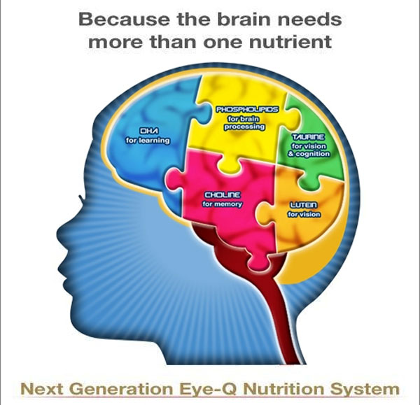 Nutrition and Early Brain Development