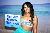 Richa Chadda's photo shoot for PETA