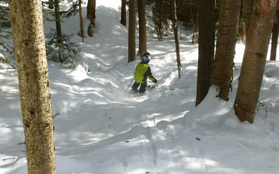 Good skiing in Gore's trees today, if you know where to look for the snow.  The Saratoga Skier and Hiker, first-hand accounts of adventures in the Adirondacks and beyond, and Gore Mountain ski blog.