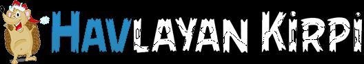 Havlayan Kirpi Logo