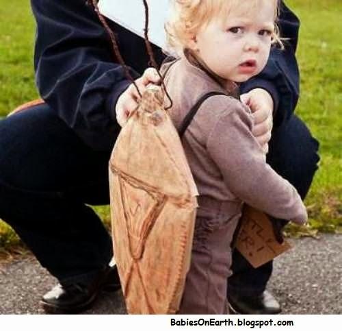 BABY STINKBUG