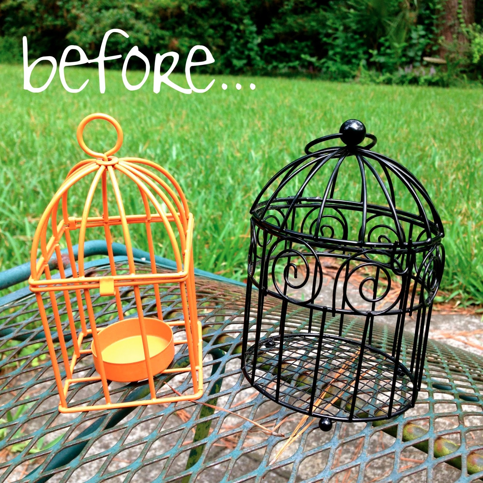 je m 39 appelle molly diy bird cage revamp. Black Bedroom Furniture Sets. Home Design Ideas