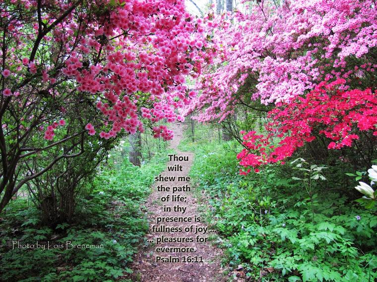 Azaleas - Psalm 16:11