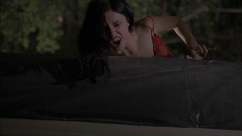 A Vampire in Van Helsing 2