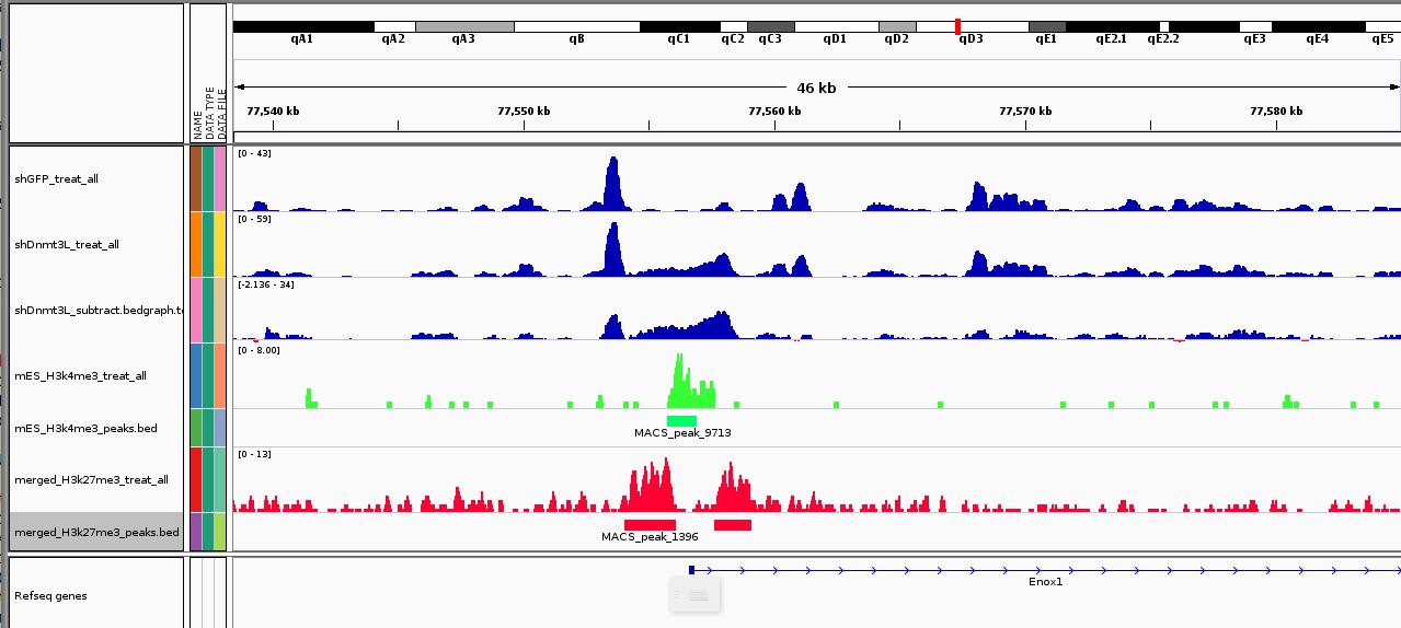 Diving into Genetics and Genomics: MeDIP-seq and histone