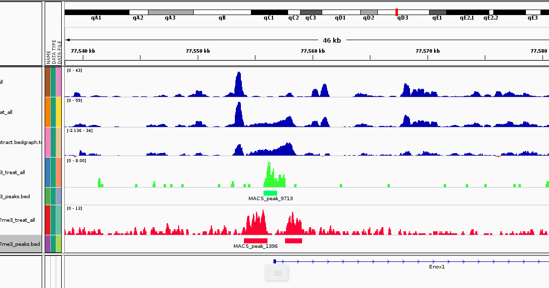 analysis of gata3 chip seq in the four cells Western blot analysis of extracts from nk-92 and k-562 cells using t-bet/tbx21 (d6n8b) xp ® rabbit mab  ® chip-seq dna  the original qpcr analysis of chip.