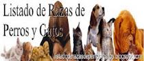 Razas de Perros y Gatos