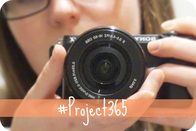project365 photo a day challenge