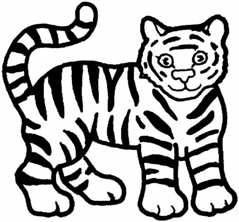 Free printable animal tiger coloring pages for Coloring pages of tiger