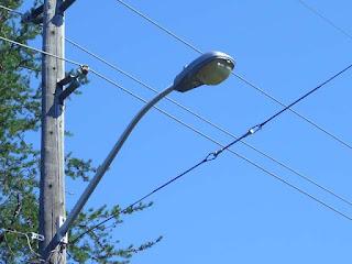 nalidara byapari sangathan to install street light