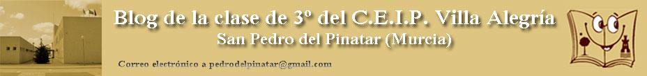 Blog de la clase (3º C.E.I.P. Villa Alegría)