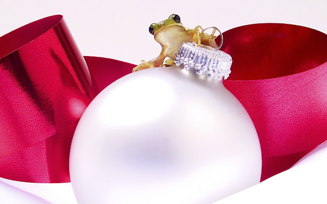 Best Jungle Life christmas ornament, frog, christmas wallpapers