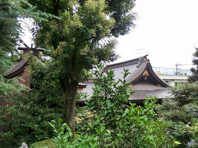 月見岡八幡神社,本殿,拝殿,新宿,落合〈著作権フリー無料画像〉Free Stock Photos