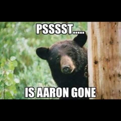psssst.... is aaron gone.- #bears #aaron #rodgers #bear #hidden