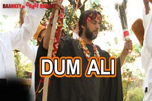 Dum Ali