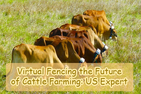 Virtual fencing the future of farming: US expert