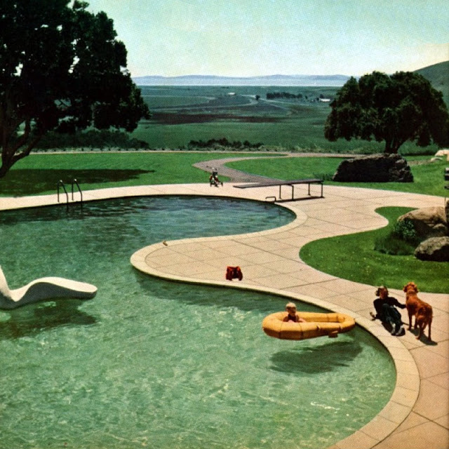 freeform pool by thomas church modern design by On 1950 pool design