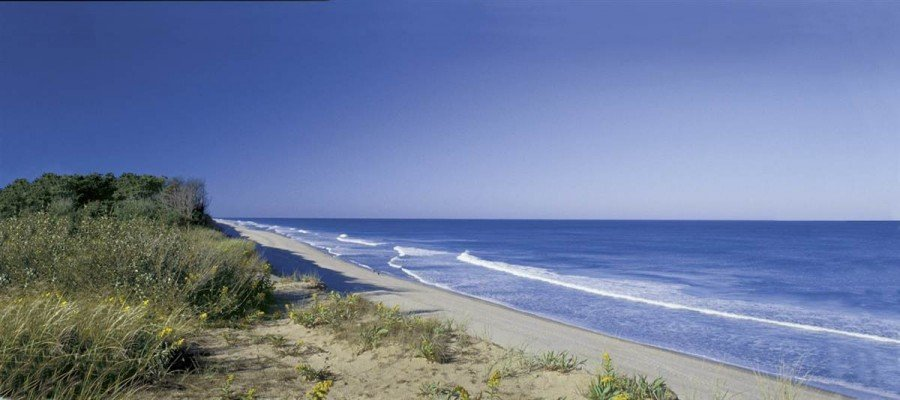 Fresh pics top 10 beaches in usa for Famous beaches in usa
