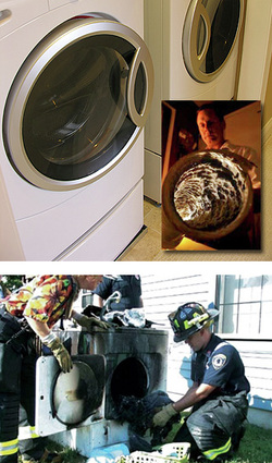 Is your dryer vent safe?