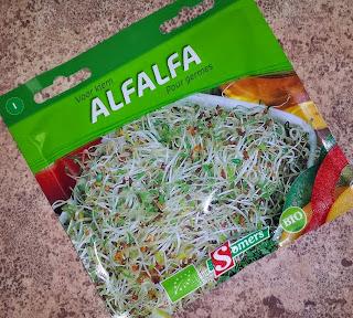 Somers Bio Graines de Luzernes Alfalfa