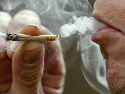 anti-inflammatory marijuana