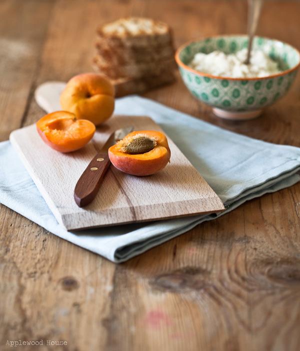 Aprikosen entsteinen