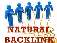 Membangun Backlink Blog Untuk Jangka Panjang