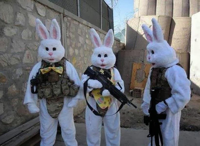 Catch the Rabbit! The International Intelligence Agency Tournament