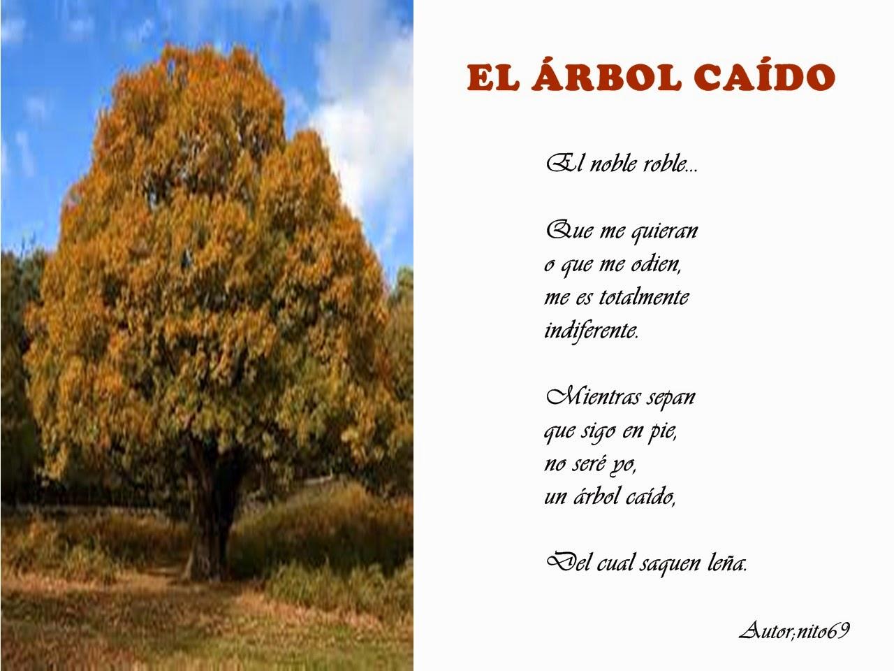 EL ÁRBOL CAÍDO