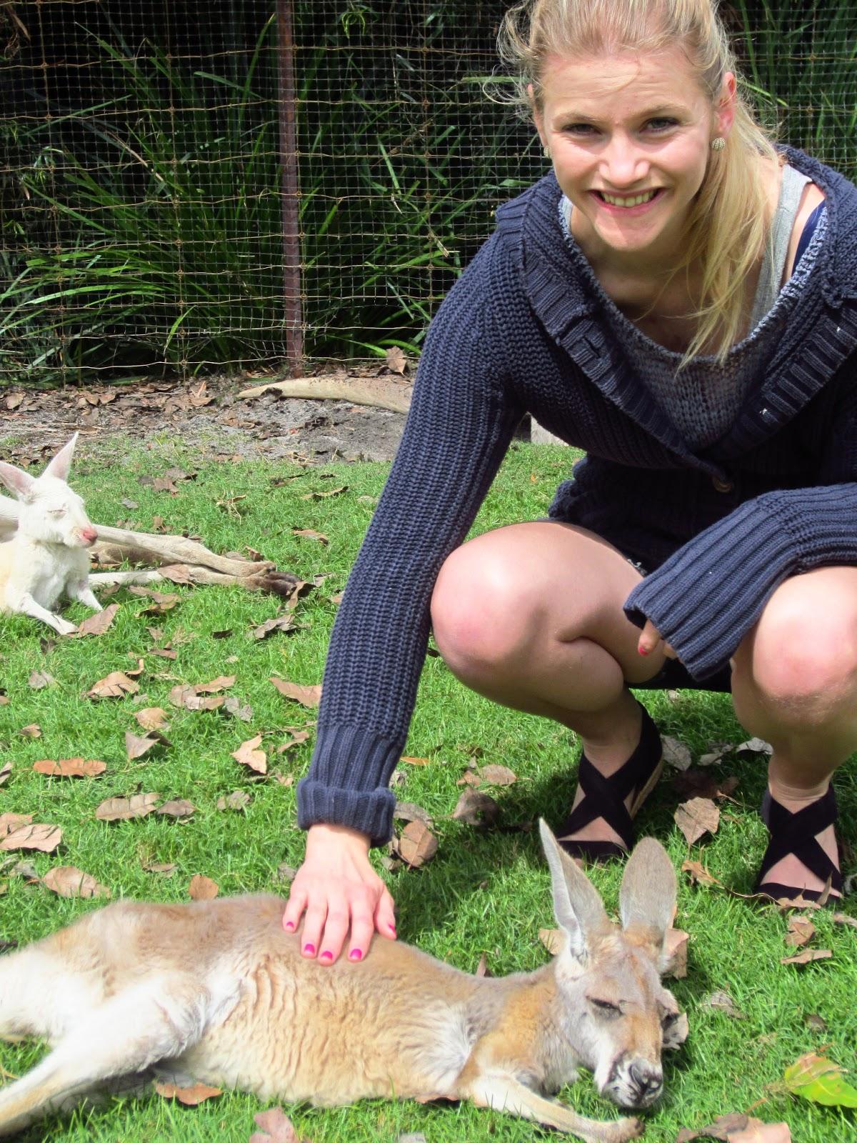 kenguru fakta for barn