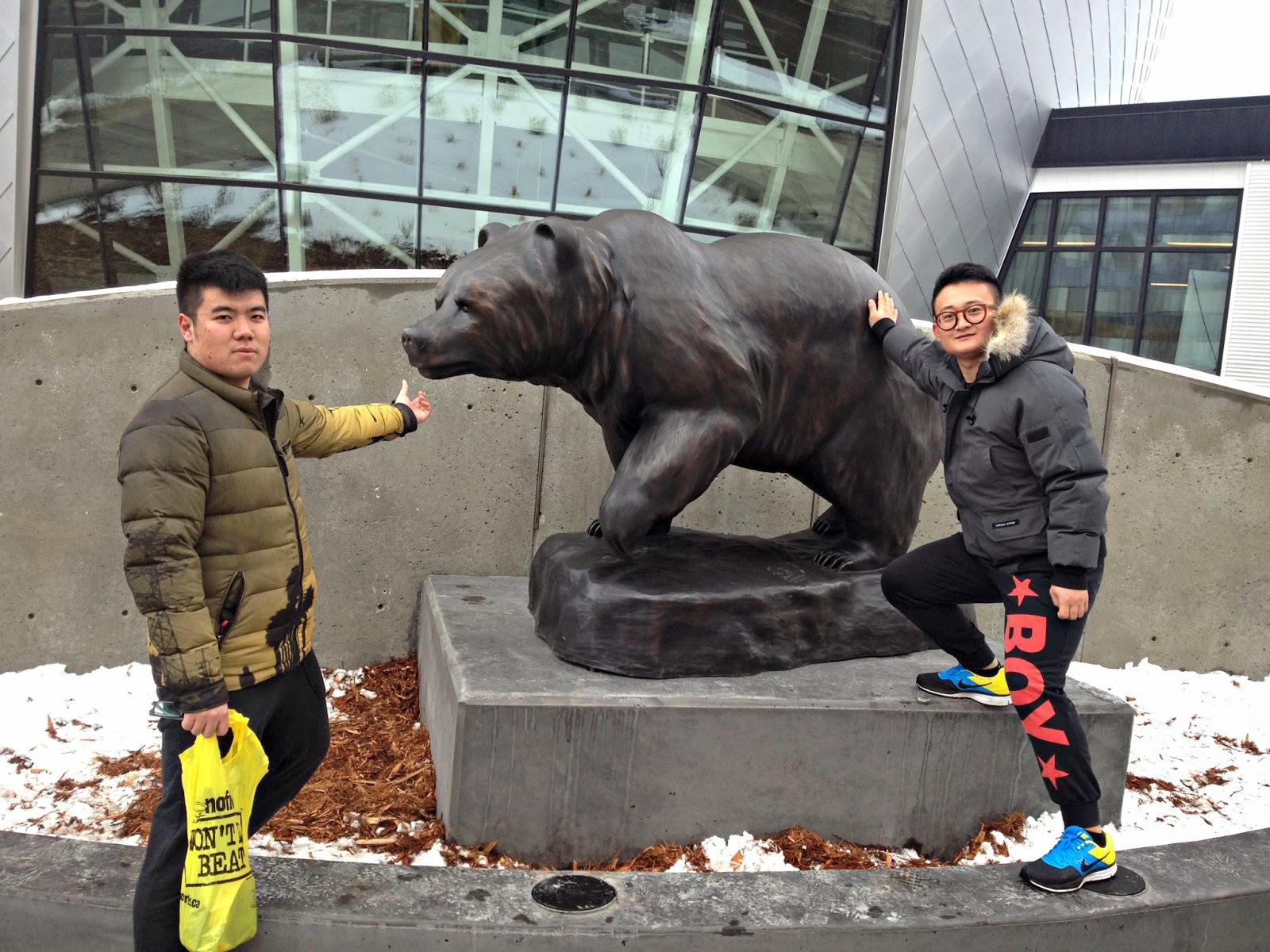 Getting Close to the UAlberta Alberta Bear