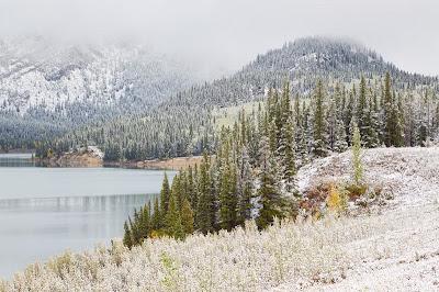 Kananaskis Country Canada Winter Snow