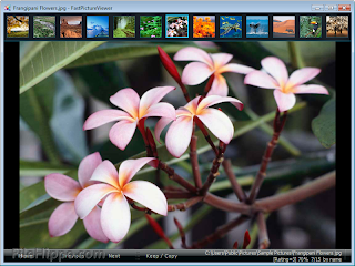Download Fast Picture Viewer 1.7 Build 227