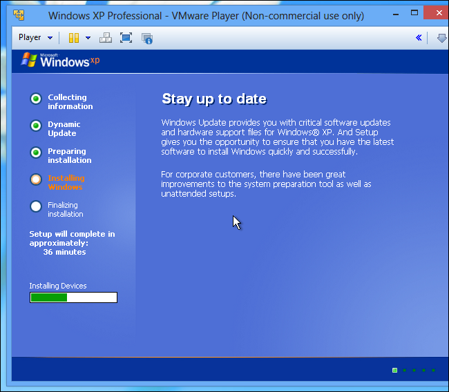 Free Dvd Player For Windows Xp Professional