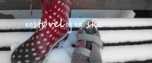 en støvel og en sko