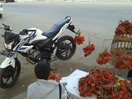 biker sejati