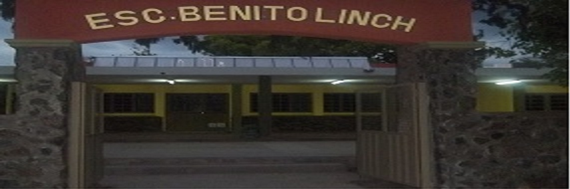 ESCUELA BENITO LYNCH.