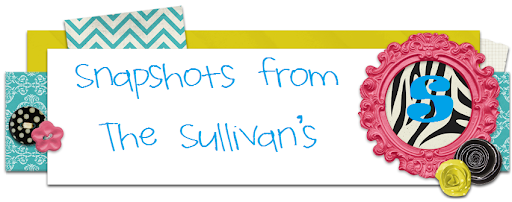 Snapshots of The Sullivans