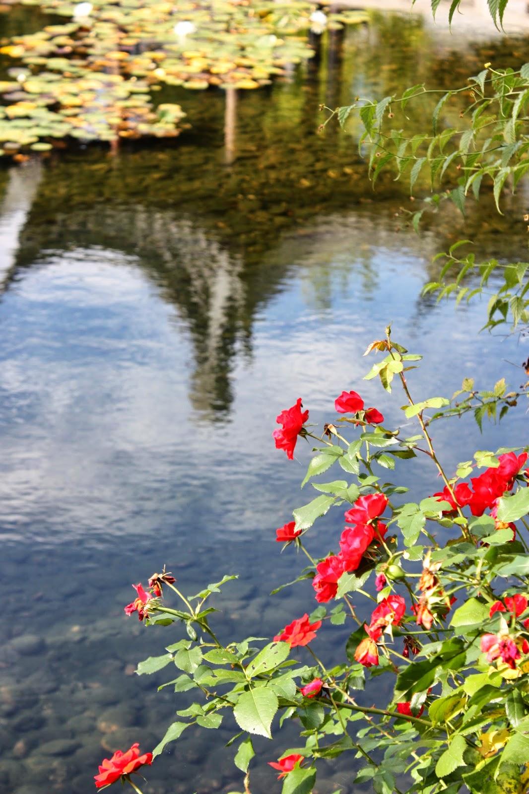One Postcard A Day Lan Su Chinese Garden In Portland Oregon
