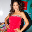 Veena Malik Actress of Bollywood