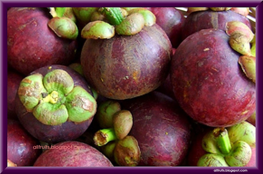 13 Best Benefits of Mangosteen