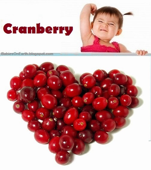 Baby Cranberry