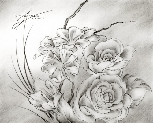 Black And White Line Drawing Flower : Poppy flower drawing illustration black white line art