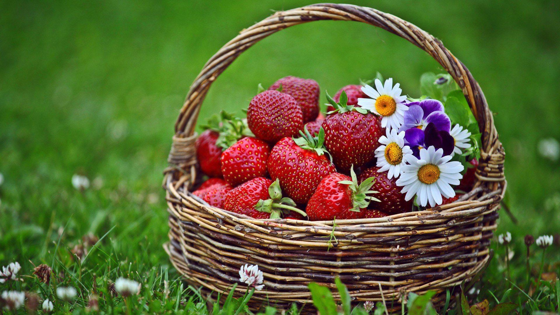 http://1.bp.blogspot.com/-4ihaheNho54/ULoDvPjWRJI/AAAAAAAANzI/Ia-mKNSuvH8/s1920/strawberry-in-basket-wallpaper.jpg