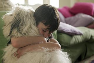 Asma e animais de estimação