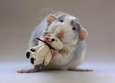 ratos-e-ursos-4.jpg