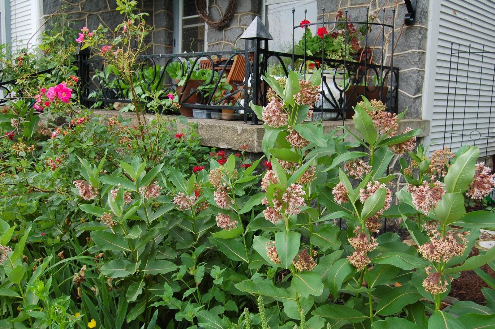 3 jardins au qu bec des plates bandes comestibles et for Jardin quebec